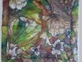 Skalné kvety / Bed-rock flowers
