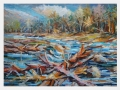 Kalamita v jesennom potoku / Calamity at fall creek