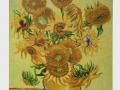 Slnečnice / Sunflowers (Amsterdam)